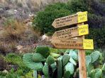 Rutas por el parque natural del Montgo