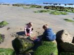 Great rockpools