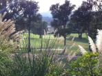 View on the fairway, from the garden