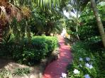 Secret Garden with many local palms and fruit trees.