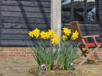 Spring flowers beneath the oak pergola at Willows Barn