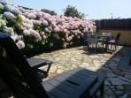 Terraza con Mesa, 6 sillas y dos tumbonas