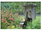 Les fontaines dans le jardin.
