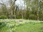 Crickley Court garden - guests are welcome to wander around.