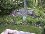 Garden, backyard & sideyard