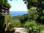 il giardino con piante di quercia e corbezzoli