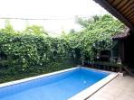 Private pool overlooking bedroom 5