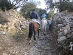 Vamos al monte de ruta ecuestre con caballos propios
