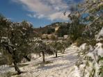 Enjoy winter in Tuscany