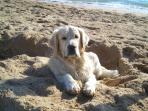 Néstor, disfrutando de sus vacaciones en la playa.