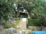 Outer garden