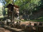 Cabaña en el Arbol
