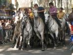 Action during Ceret Feria