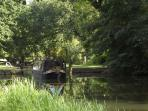 Peace & tranquillity on the River Wey