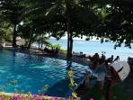 Au pied de la résidence, la piscine au cœur du jardin tropical et face à l'océan