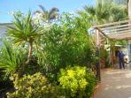 giardino patio casa