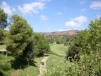 The stunning Santa Maria Golf Course - widley considered one of the best on the Cost Del Sol