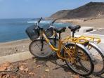 Posibilidad de alquiler de bici