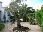 Casa Ramaje front garden