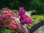 Floral Gardens at Wolfen Mill Country Retreats