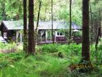 Liever Cabin - a unique hideaway in the woods.