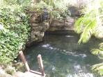 Fresh water cenote right next to the pool