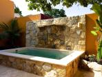 Pool with a waterfall feature