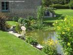 Garden with wildlife pond