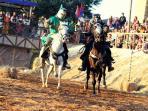 Jousting During Medieval Fiesta
