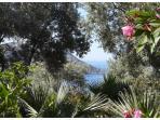 Kalkan bay at the end of garden.