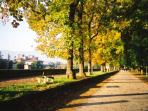 On top of the walls of Lucca in the Autumn, a beautiful stroll around the city