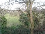 The outlook across playing fields from the twin bedroom window at the rear of the property