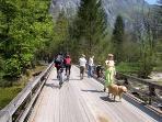Hiking around Lake Bohinj