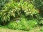 Lost Gardens of Heligan - a short drive away