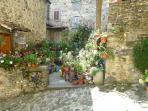 Anghiari - Centro Storico - with flowers