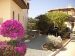 Side Garden Area & Garage