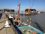 Working fishing harbour - few metres from your home