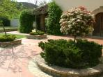 The courtyard in spring