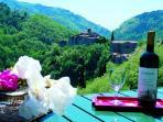View from Fattoria di Pietrabuona