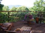 Tree top decking