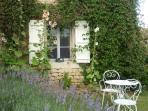 Kitchen window Hollyhock Cottage