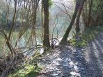 Riverside walk to Cilgerran Castle from the cottage