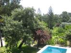 Big green grass near the pool