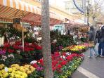 Cours Saleya - Market in Old Town - ideal for fresh fruit & veg.