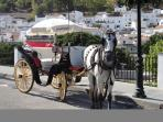 Horse and carriage in Mijas