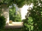 Summer garden view
