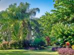 Historic 18th century sugar mill in beautiful tropical gardens