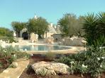 Pool Garden View