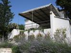 Villa with lavender in blossom
