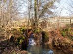 The stream which runs through the entire length of the farm